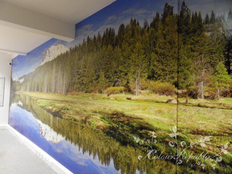 Custom Printed Mural close-up