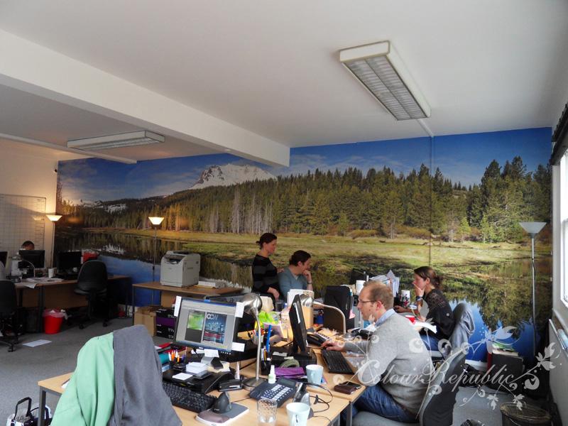 Canadian Vista Wallpaper Mural