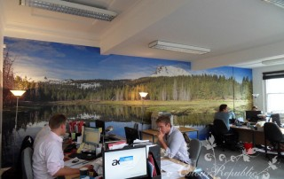 Office wallpaper mural Brighton